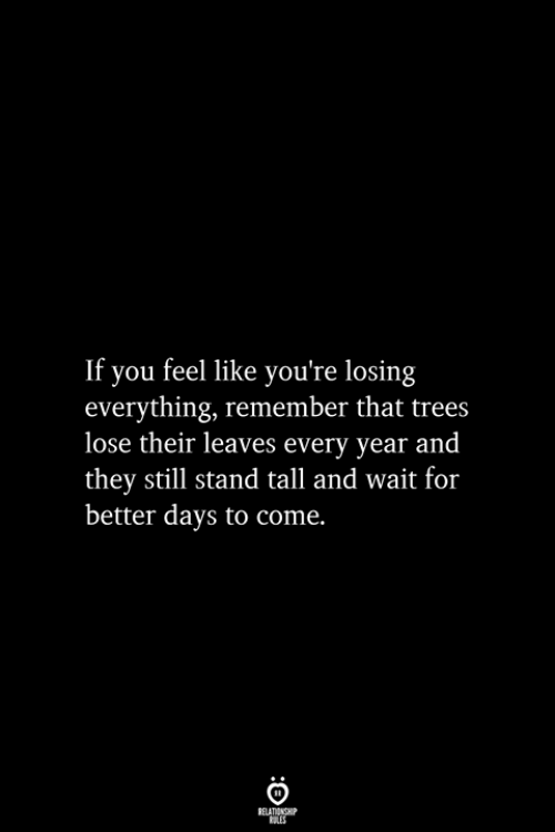 Days To: If you feel like you're losing  everything, remember that trees  lose their leaves every year and  they still stand tall and wait for  better days to come.  RELATIONSHIP  ES