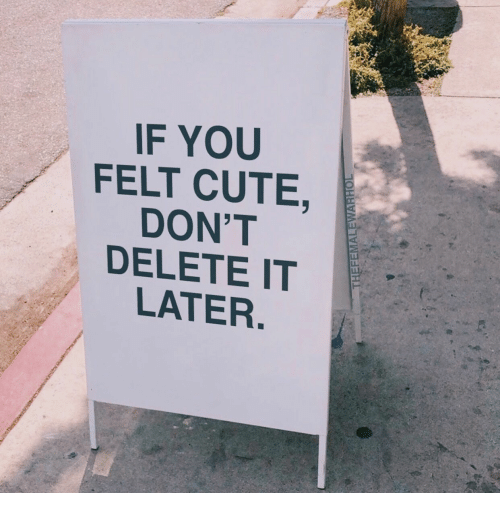 Delete It: IF YOU  FELT CUTE,  DON'T  DELETE IT  LATER.  THEFEMALEWARHOL