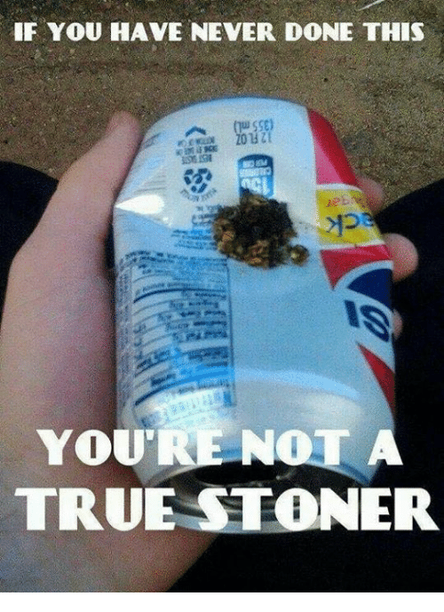 sse: IF YOU HAVE NEVER DONE THIS  SSE)  TRUE STONER