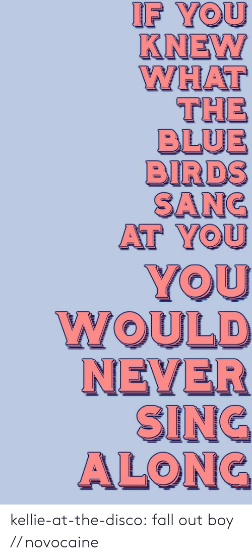 Fall, Tumblr, and Birds: IF YOU  KNEW  WHAT  THE  BLUE  BIRDS  SANC  AT YOU kellie-at-the-disco:  fall out boy // novocaine