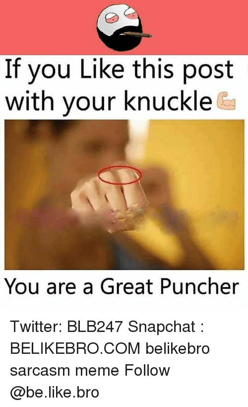 Be Like, Meme, and Memes: If you Like this post  with your knuckle  You are a Great Puncher Twitter: BLB247 Snapchat : BELIKEBRO.COM belikebro sarcasm meme Follow @be.like.bro