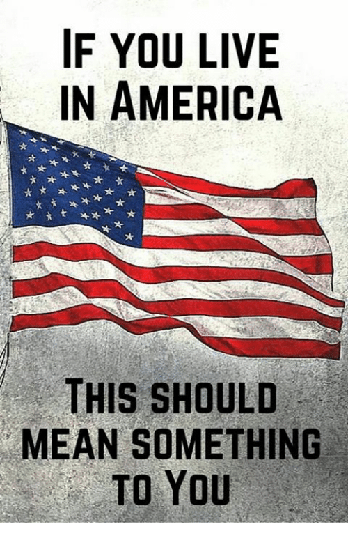 America, Memes, and Live: IF YOU LIVE  IN AMERICA  THIS SHOULD  MEAN SOMETHING  TO YoU