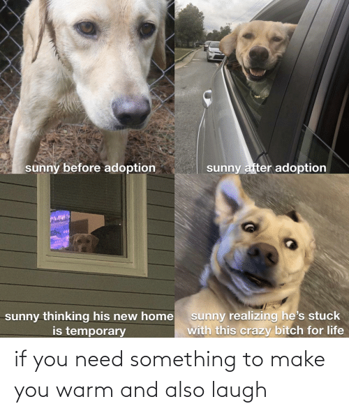 Make You: if you need something to make you warm and also laugh