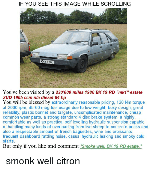 """If You See This Image While Scrolling: IF YOU SEE THIS IMAGE WHILE SCROLLING  C44 LGK  You've been visited by a 230'000 miles 1986 BX 19 RD """"mk1"""" estate  XUD 1905 ccm n/a diesel 64 h  You will be blessed by  extraordinarly reasonable pricing, 120 Nm torque  at 2000 rpm, 45-60 mpg fuel usage due to low weight, boxy design, great  reliability, plastic bonnet and tailgate, uncomplicated maintenance, cheap  common wear parts, a strong standard 4 disc brake system, a highly  comfortable as well as practical self levelling hydraulic suspension capable  of handling many kinds of overloading from live sheep to concrete bricks and  also a respectable amount of french baguettes, wine and croissants,  frequent dashboard rattling noise, casual hydraulic leaking and smoky cold  starts  But only if you like and comment  Smoke well BX 19 RD estate."""" smonk well citron"""