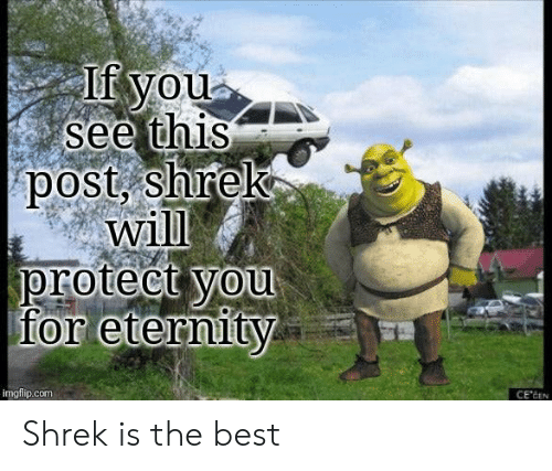 Eternity: If you  see this  post, shrek  will  protect you  for eternity  imgflip.com  CE'CEN Shrek is the best