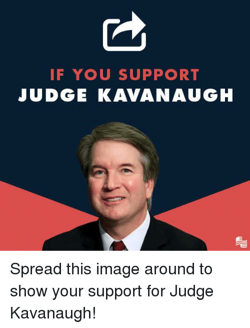 Image, Conservative, and Judge: IF YOU SUPPORT  JUDGE KAVANAUGH Spread this image around to show your support for Judge Kavanaugh!