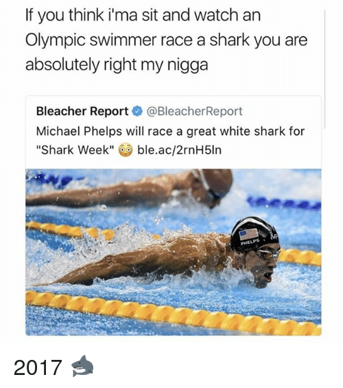 Michael Phelps: If you think ima sit and watch an  Olympic swimmer race a shark you are  absolutely right my nigga  Bleacher Report  @Bleacher Report  Michael Phelps will race a great white shark for  Shark Week  ble.ac/2rnH5ln 2017 🦈