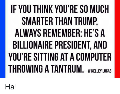 Memes, Computer, and Trump: IF YOU THINK YOU'RE SO MUCH  SMARTER THAN TRUMP,  ALWAYS REMEMBER: HE'S A  BILLIONAIRE PRESIDENT, AND  YOU'RE SITTING AT A COMPUTER  THROWING A TANTRUM. -WKELLEY LUCAS Ha!