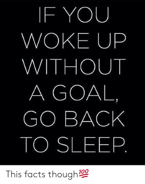 Facts, Goal, and Sleep: IF YOU  WOKE UP  WITHOUT  A GOAL  GO BACK  TO SLEEP This facts though💯