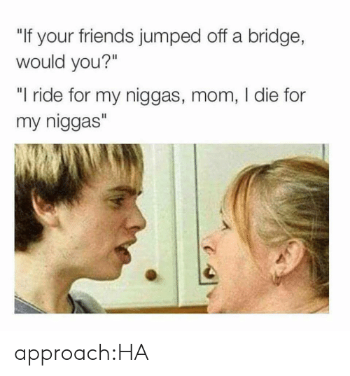 "my niggas: ""If your friends jumped off a bridge,  would you?""  ""I ride for my niggas, mom, I die for  my niggas"" approach:HA"