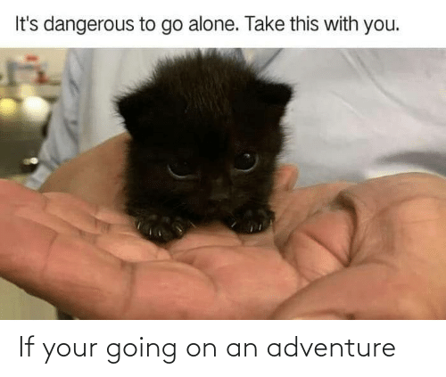 Adventure, Going-On-An-Adventure, and Your: If your going on an adventure