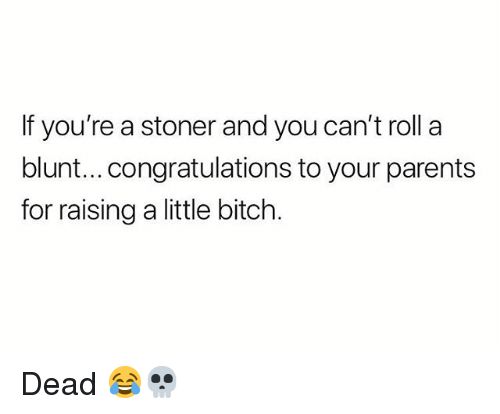 Bitch, Parents, and Weed: If you're a stoner and you can't roll a  blunt...congratulations to your parents  for raising a little bitch Dead 😂💀