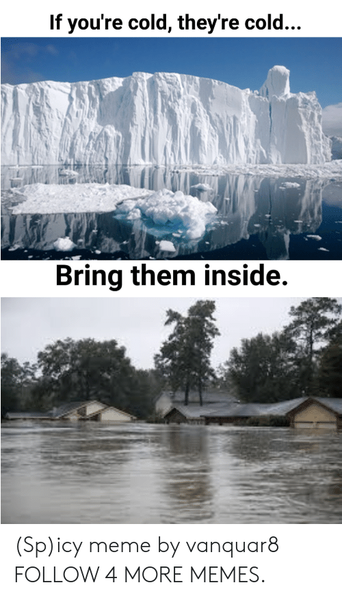 Spicy Meme: If you're cold, they're cold...  Bring them inside. (Sp)icy meme by vanquar8 FOLLOW 4 MORE MEMES.