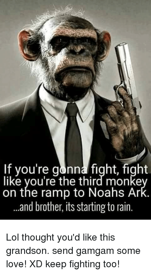 fightings: If you're gonna fight, fight  like you're the third monke  on the ramp to Noahs Ar  .and brother, its starting to rain. Lol thought you'd like this grandson. send gamgam some love! XD keep fighting too!