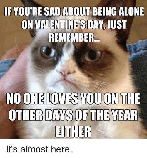 Being Alone, Memes, and Valentine's Day: IF YOU'RE SAD ABOUT BEING ALONE  ON VALENTINES DAY IUST  REMEMBER  NO ONE LOVES YOU ON THE  OTHER DAYS OF THE YEAR  EITHER It's almost here.