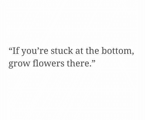 "Flowers, Grow, and Youre: ""If you're stuck at the bottom,  grow flowers there."""