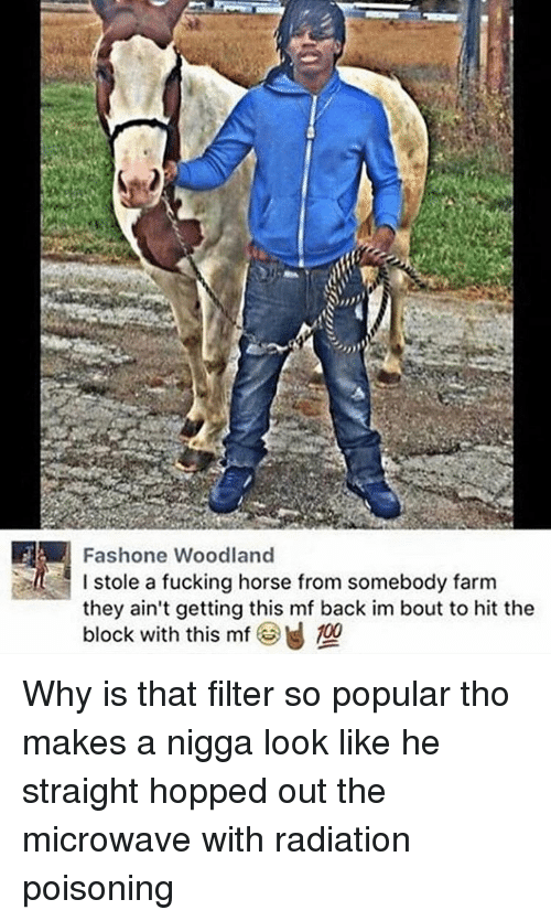 woodland: IFA Fashone Woodland  I stole a fucking horse from somebody farm  they ain't getting this mf back im bout to hit the  block with this mf 100 Why is that filter so popular tho makes a nigga look like he straight hopped out the microwave with radiation poisoning