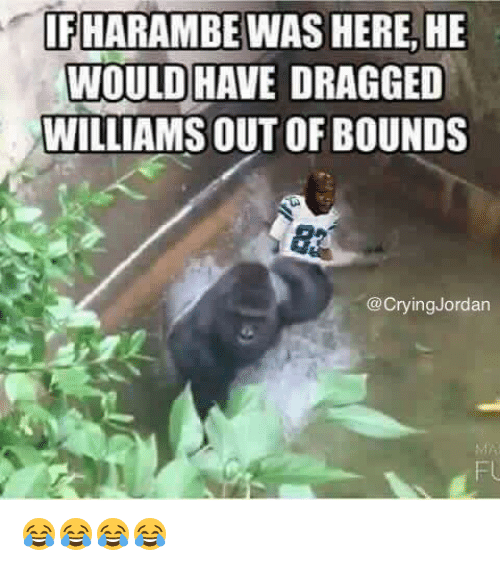 Crying, Nfl, and Jordan: IFHARAMBE WAS HERE, HE  WOULD HAVE DRAGGED  WILLIAMS OUT OF BOUNDS  @Crying Jordan 😂😂😂😂