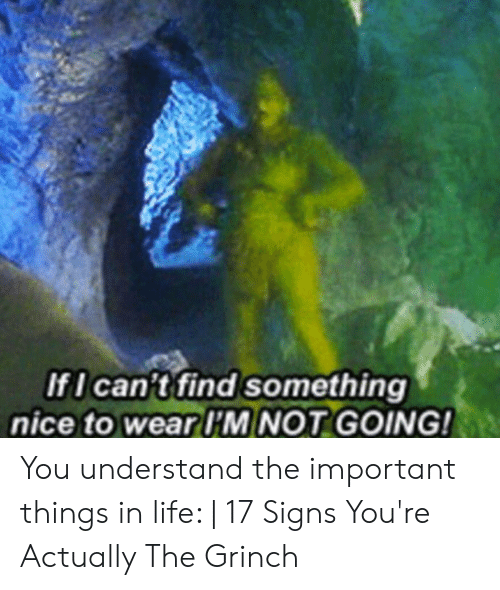 The Grinch, Life, and Nice: IfI can't find something  nice to wear I'M NOT GOING! You understand the important things in life:   17 Signs You're Actually The Grinch