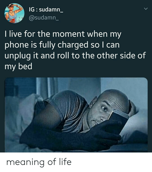 Life, Phone, and Live: IG sudamn  @sudamn_  I live for the moment when my  phone is fully charged so I can  unplug it and roll to the other side of  my bed meaning of life