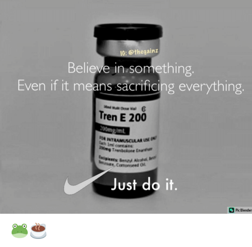 Bailey Jay, Just Do It, and Memes: IG: @thegainz  Believe in.something,  Even if it means sacrificing everything.  Tren E 200  200mg/ml  A INTRAM  Just do it.  Pic Blender 🐸☕️
