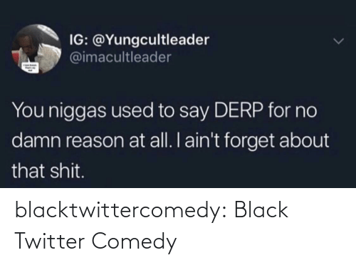 About That: IG: @Yungcultleader  @imacultleader  You niggas used to say DERP for no  damn reason at all. I ain't forget about  that shit. blacktwittercomedy:  Black Twitter Comedy