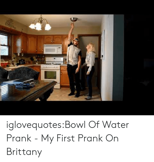 Prank, Tumblr, and Blog: iglovequotes:Bowl Of Water Prank - My First Prank On Brittany