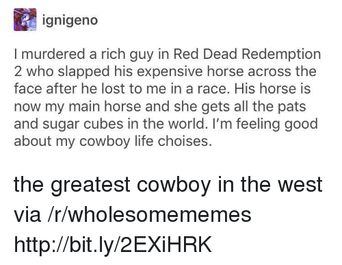 red dead redemption 2: ignigeno  I murdered a rich guy in Red Dead Redemption  2 who slapped his expensive horse across the  face after he lost to me in a race. His horse is  now my main horse and she gets all the pats  and sugar cubes in the world. I'm feeling good  about my cowboy life choises. the greatest cowboy in the west via /r/wholesomememes http://bit.ly/2EXiHRK