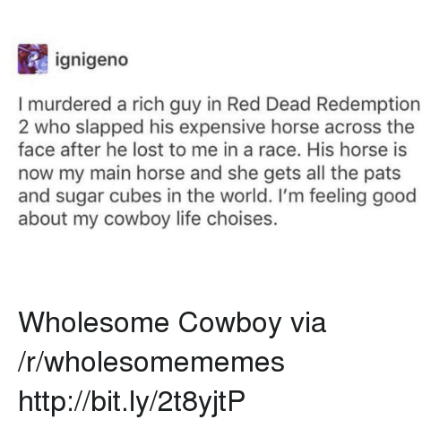 red dead redemption 2: ignigeno  I murdered a rich guy in Red Dead Redemption  2 who slapped his expensive horse across the  face after he lost to me in a race. His horse is  now my main horse and she gets all the pats  and sugar cubes in the world. I'm feeling good  about my cowboy life choises. Wholesome Cowboy via /r/wholesomememes http://bit.ly/2t8yjtP