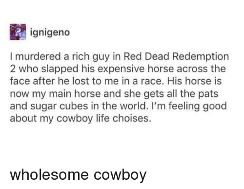 Life, Tumblr, and Lost: ignigeno  I murdered a rich guy in Red Dead Redemption  2  who slapped his expensive horse across the  face after he lost to me in a race. His horse is  now my main horse and she gets all the pats  and sugar cubes in the world. I'm feeling good  about my cowboy life choises.