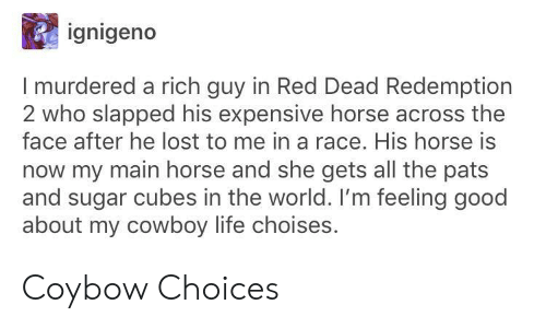 red dead redemption 2: ignigeno  I murdered a rich guy in Red Dead Redemption  2 who slapped his expensive horse across the  face after he lost to me in a race. His horse is  now my main horse and she gets all the pats  and sugar cubes in the world. I'm feeling good  about my cowboy life choises. Coybow Choices