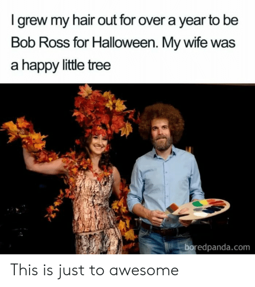 Hair Out: Igrew my hair out for over a year to be  Bob Ross for Halloween. My wife was  a happy little tree  boredpanda.com This is just to awesome