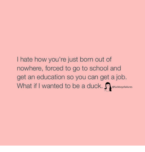 An Education: Ihate how you're just born out of  nowhere, forced to go to school and  get an education so you can get a job.  What if I wanted to be a duck. fuckboysfalures