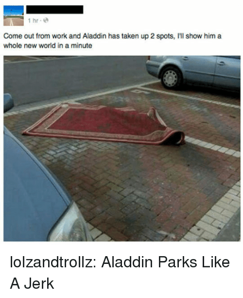 Aladdin: İhr.@  Come out from work and Aladdin has taken up 2 spots, I'll show him a  whole new world in a minute lolzandtrollz:  Aladdin Parks Like A Jerk