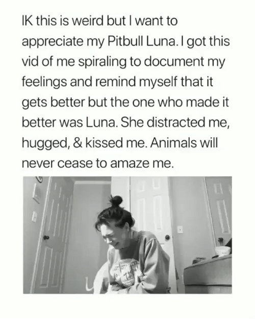 amaze: IK this is weird but I want to  appreciate my Pitbull Luna.I got this  vid of me spiraling to document my  feelings and remind myself that it  gets better but the one who made it  better was Luna. She distracted me,  hugged, & kissed me. Animals will  never cease to amaze me