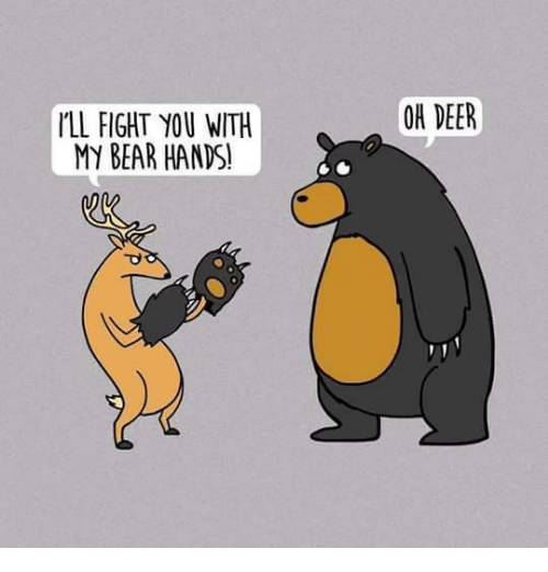 Ill Fight You: I'LL FIGHT YOU WITH  MY BEAR HANDS!  OA DEER