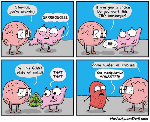 Memes, Giant, and 🤖: I'll give you a choice.  Stomach  you're starving!  Do you want this  TINY hamburger?  Same number of calories!  Or this GIANT  plate of salad?THAT!  You manipulative  MONSSTER  THAT!  theAwkwardYeti.com