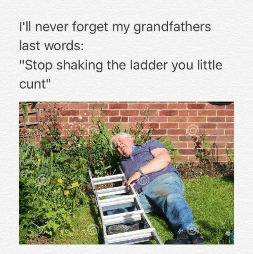 "Ladder: I'll never forget my grandfathers  last words:  ""Stop shaking the ladder you little  cunt"""