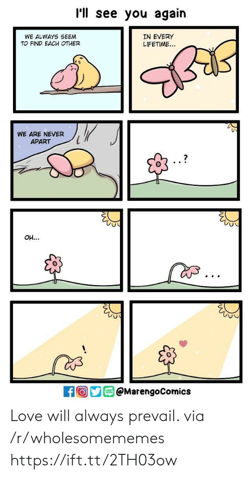 Apartments: I'll see you again  WE ALWAYS SEEM  TO FIND EACH OTHER  IN EVERY  LIFETIME...  WE ARE NEVER  APART  1  Oy@MarengoComics Love will always prevail. via /r/wholesomememes https://ift.tt/2TH03ow