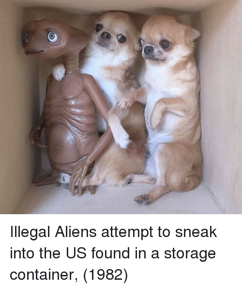 Illegal Aliens: Illegal Aliens attempt to sneak into the US found in a storage container, (1982)