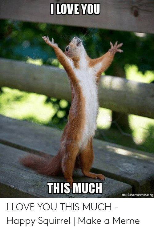 Love, Meme, and I Love You: ILOVE YOU  THIS MUCH  makeameme.org I LOVE YOU THIS MUCH - Happy Squirrel | Make a Meme