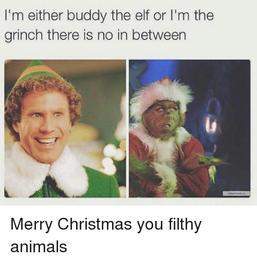 Christmas Memes Elf.I M Either Buddy The Elf Or L M The Grinch There Is No In