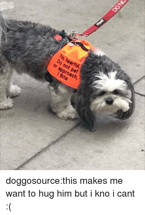 Fearful: Im fearful  Do  not pet  or approach  1 Bite doggosource:this makes me want to hug him but i kno i cant :(