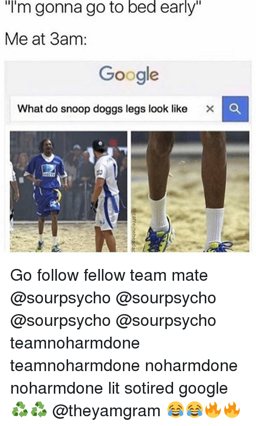 """Snooping: """"I'm gonna go to bed early""""  Me at 3am:  Google  What do snoop doggs legs look like X C Go follow fellow team mate @sourpsycho @sourpsycho @sourpsycho @sourpsycho teamnoharmdone teamnoharmdone noharmdone noharmdone lit sotired google ♻️♻️ @theyamgram 😂😂🔥🔥"""