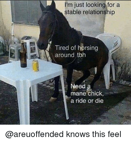 dieing: I'm just looking for a  stable relationship  Tired of horsing  red oft  around tbh  Need  mane chick,  a ride or die @areuoffended knows this feel
