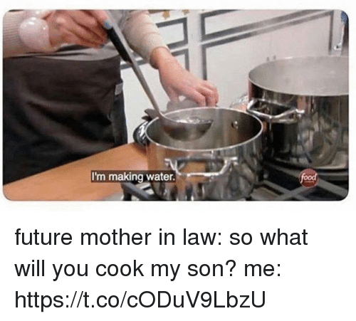 Future, Memes, and Water: I'm making water. future mother in law: so what will you  cook my son?  me: https://t.co/cODuV9LbzU