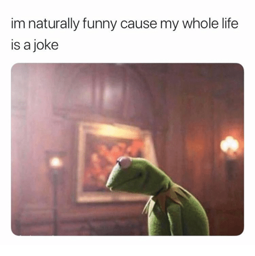 Funny, Life, and Memes: im naturally funny cause my whole life  is a joke