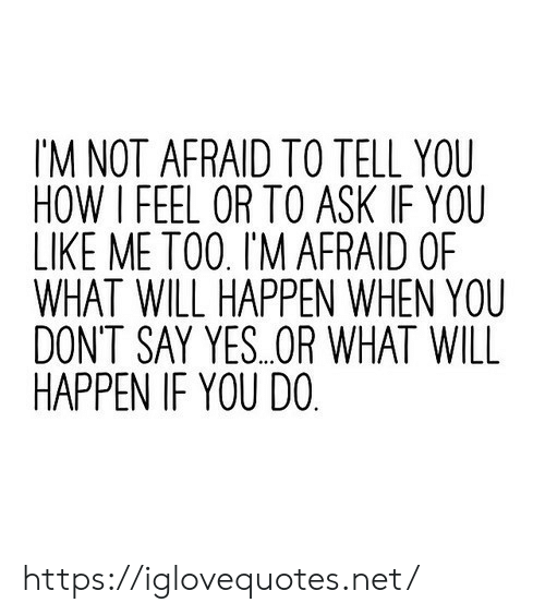 How I Feel: IM NOT AFRAID TO TELL YOU  HOW I FEEL OR TO ASK IF YOU  LIKE ME TO0. I'M AFRAID OF  WHAT WILL HAPPEN WHEN YOU  DONT SAY YES..OR WHAT WILL  HAPPEN IF YOU DO https://iglovequotes.net/