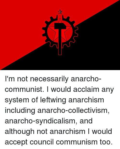 Im Not Necessarily Anarcho Communist I Would Acclaim Any System Of