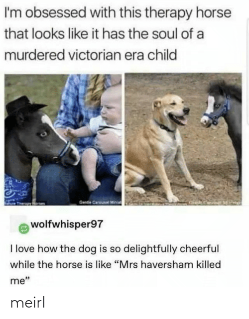 "Victorian: I'm obsessed with this therapy horse  that looks like it has the soul of a  murdered victorian era child  Gende Carousal Minia  wolfwhisper97  I love how the dog is so delightfully cheerful  while the horse is like ""Mrs haversham killed  me"" meirl"